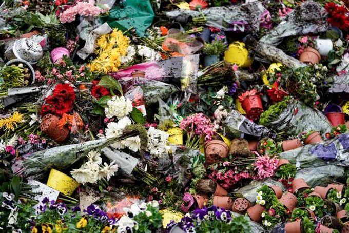 荷兰销毁百万束鲜花 荷兰呼吁少抢厕纸多买花
