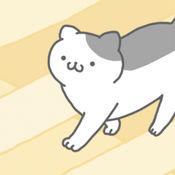 猫咪很可爱 可是我是