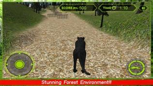 野生黑豹袭击模拟器3D