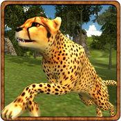 愤怒的猎豹生存