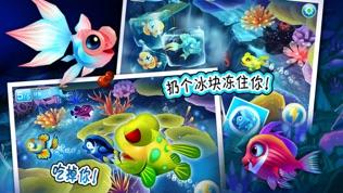 乐乐鱼聚会:大鱼吃小鱼软件截图2