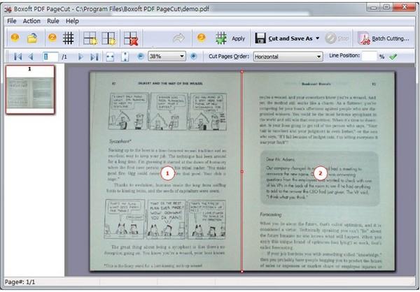 Boxoft PDF PageCut(PDF分割工具)下载