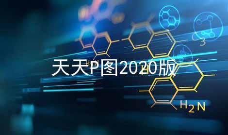 天天P图2020版