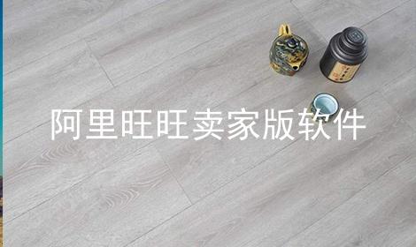 阿里旺旺卖家版软件