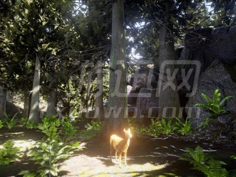 生存:动物模拟 英文版下载