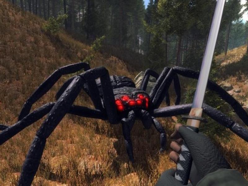 森林蜘蛛 英文版下载