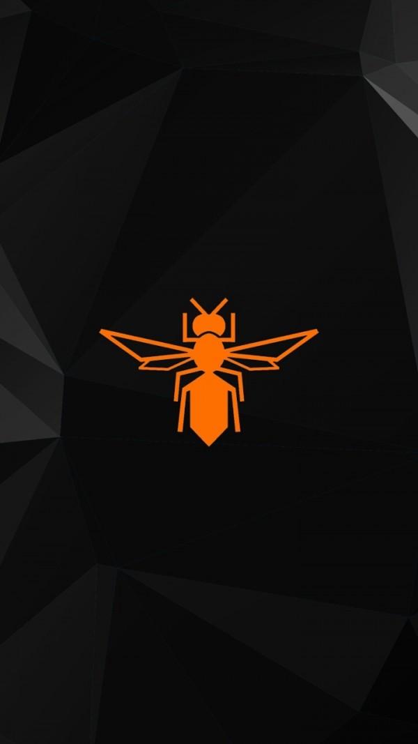 Bee360软件截图3