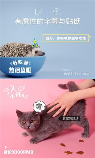 猫饼短视频软件截图2