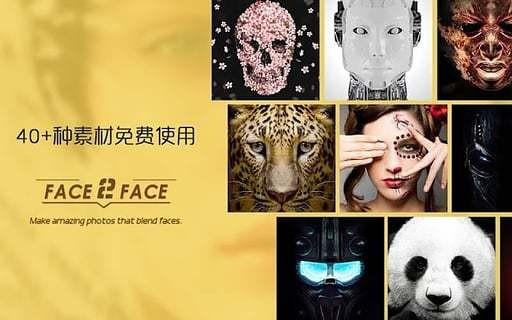 Face 2 Face软件截图1