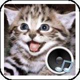动物的声音软件截图0