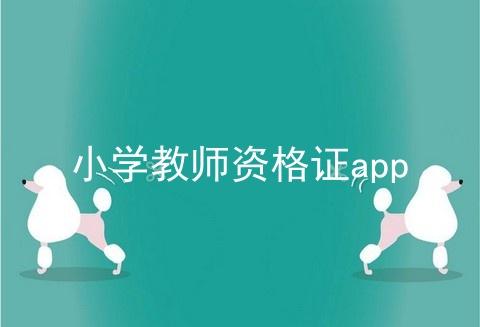 小学教师资格证app