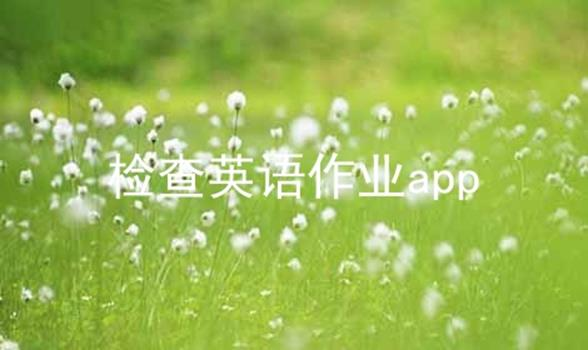 检查英语作业app软件合辑