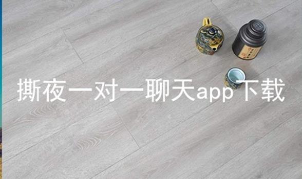 撕夜一对一聊天app下载