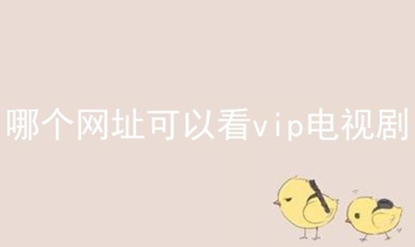 哪个网址可以看vip电视剧