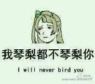 南小鸟表情包