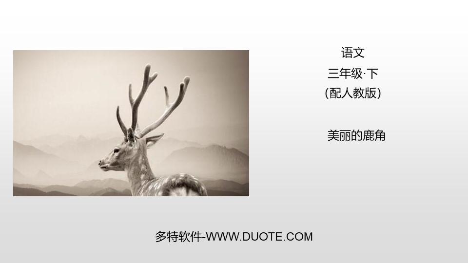 《美丽的鹿角》PPT课件下载