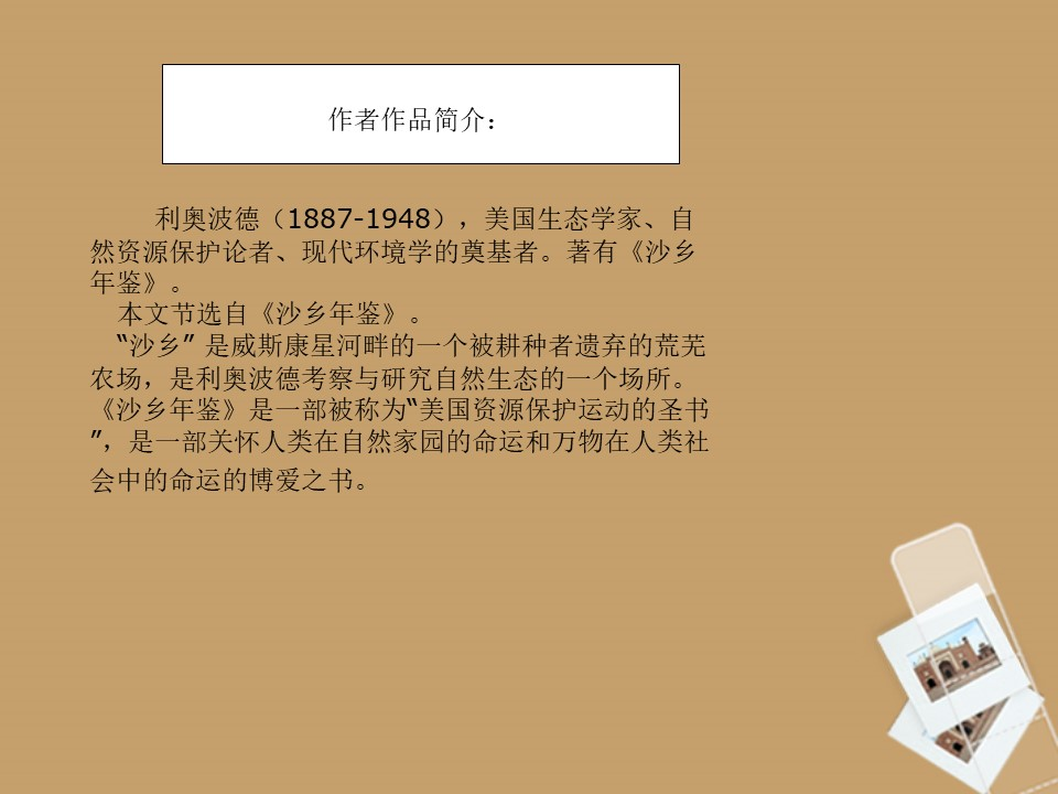《大雁归来》PPT课件4下载