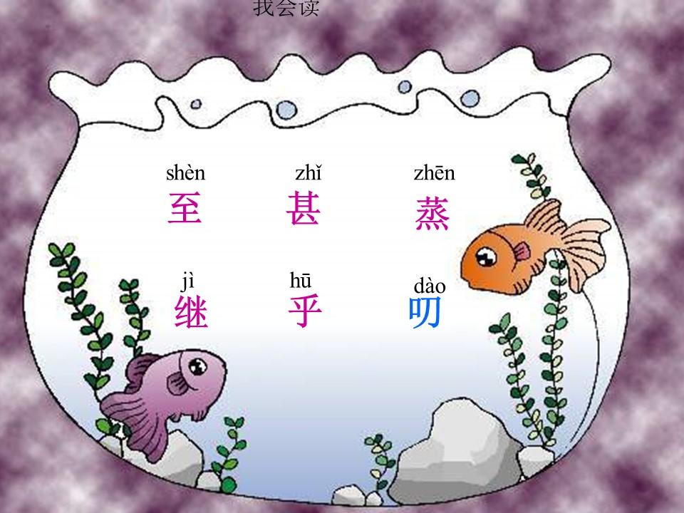 《浅水洼里的小鱼》PPT教学课件下载3下载