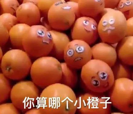 抖音你算哪根葱你算哪个橙子表情包 抖音表情包大全介绍推荐