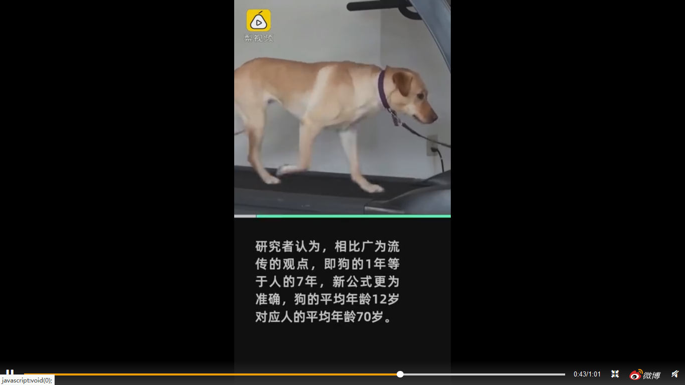 人犬年龄转换公式是怎么回事?最新人犬年龄转换公式科普