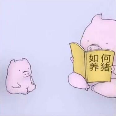 如何养猪表情包大全 抖音看如何养猪表情包分享