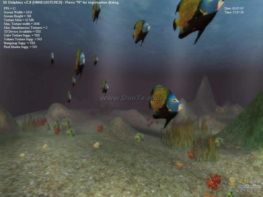 3D Dolphins下载