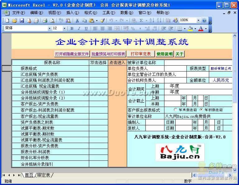 八九会计报表审计调整及分析系统下载