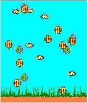 鱼缸屏保FishTank下载