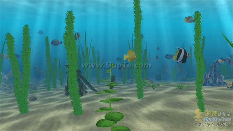 Water Life 海中生活下载