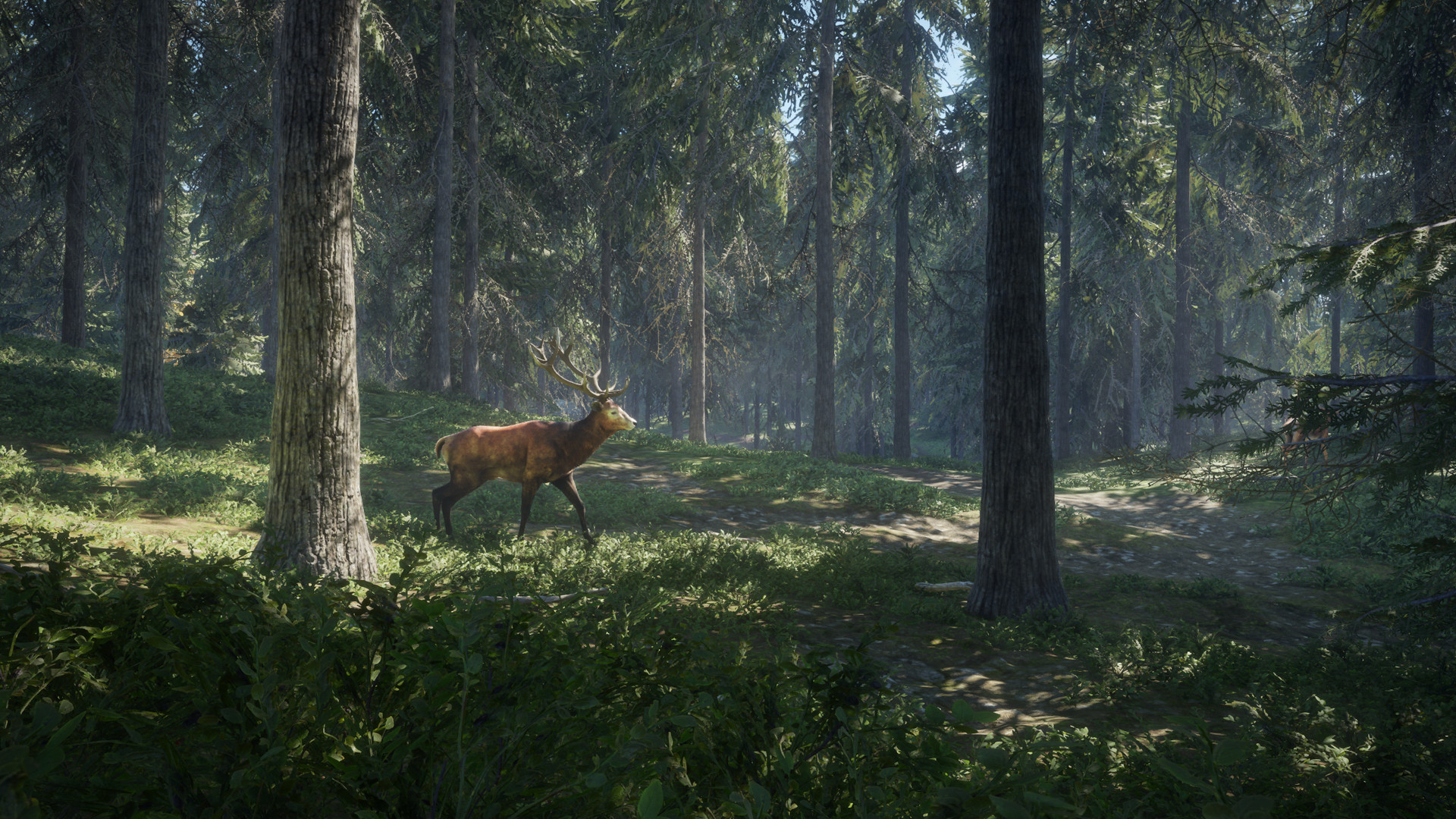 猎人:野性的呼唤下载