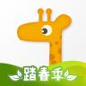 出国实用app