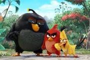 《愤怒的小鸟》3D电影首曝 角色超萌