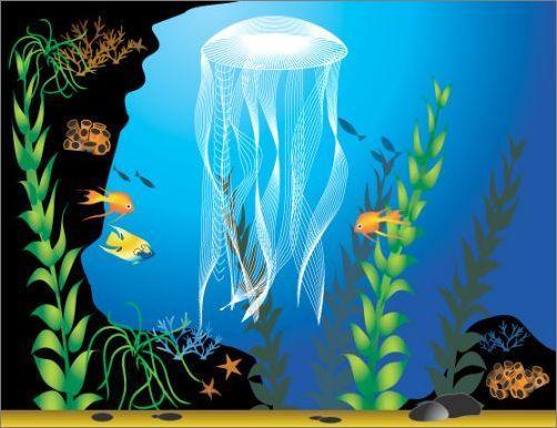 Illustrator绘制美丽的海底世界