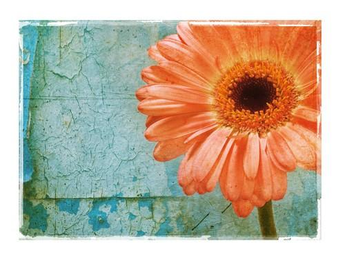 纹理图层与混合模式让照片更具艺术气息