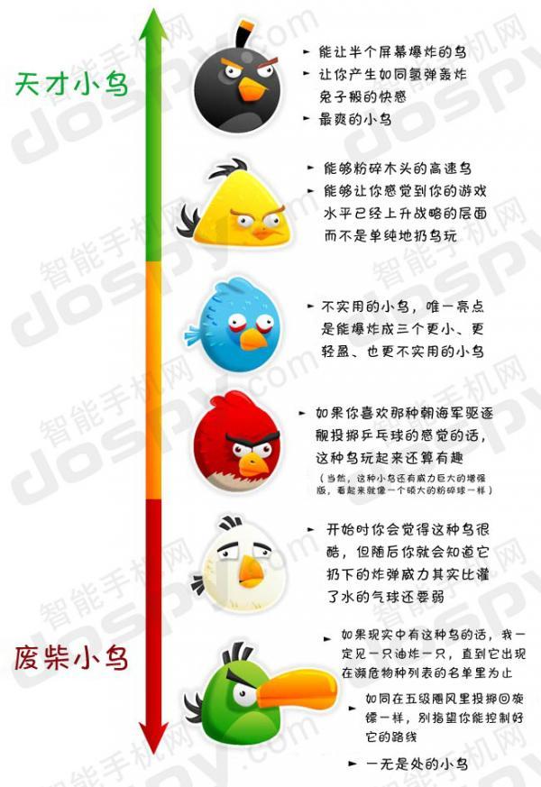 《愤怒的小鸟》各种小鸟犀利点评:从天才到废柴