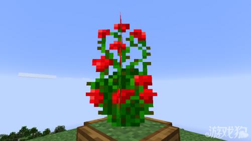 《我的世界》1.7矮玫瑰丛实现办法讲解