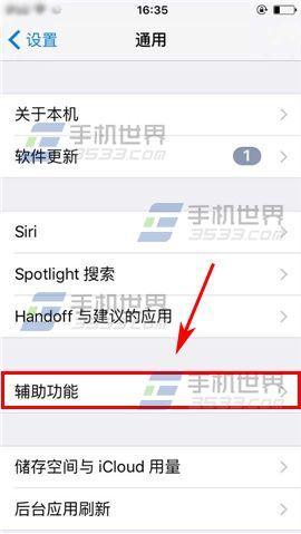 苹果iPhone6sPlus怎么设置切换控制