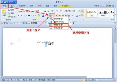WPS怎么输入带圈文字与数字
