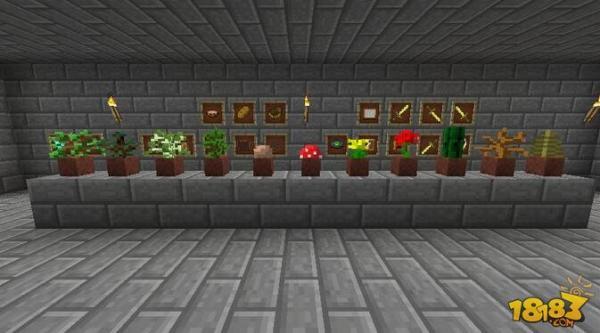 我的世界游戏中怎么种花呢?花盘是什么作用呢?